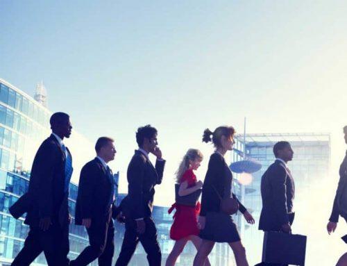 Employee Development Plan to Meet Organizational Goals