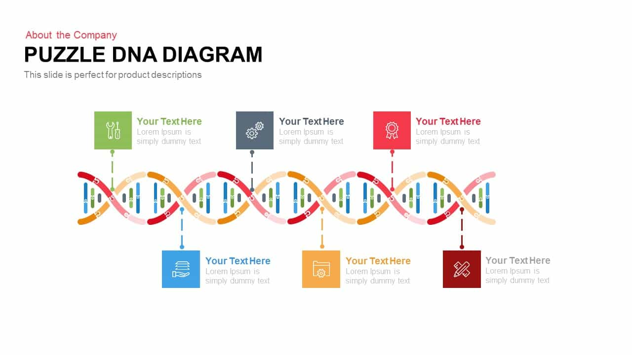 Puzzle DNA PowerPoint Template Diagram and Keynote Slide