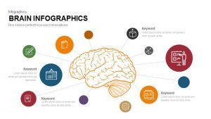 Infographic Brain PowerPoint Template and Keynote